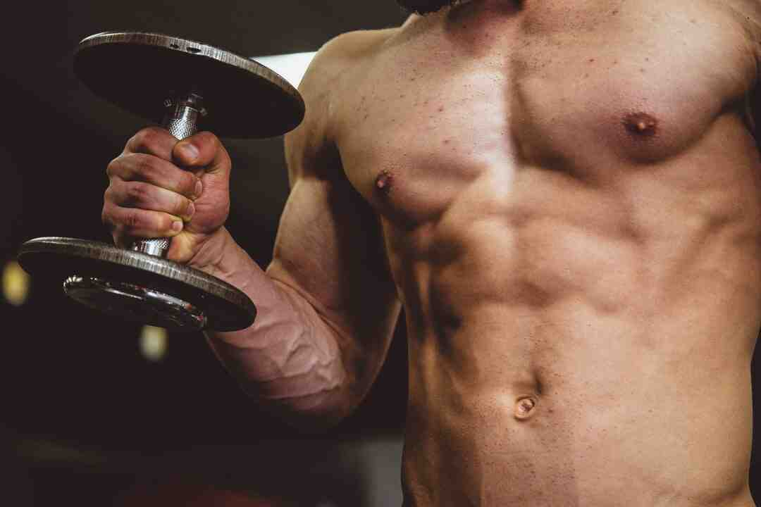 Programme musculation dos