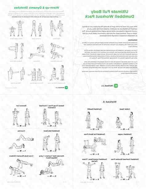 Programme musculation haltère pdf
