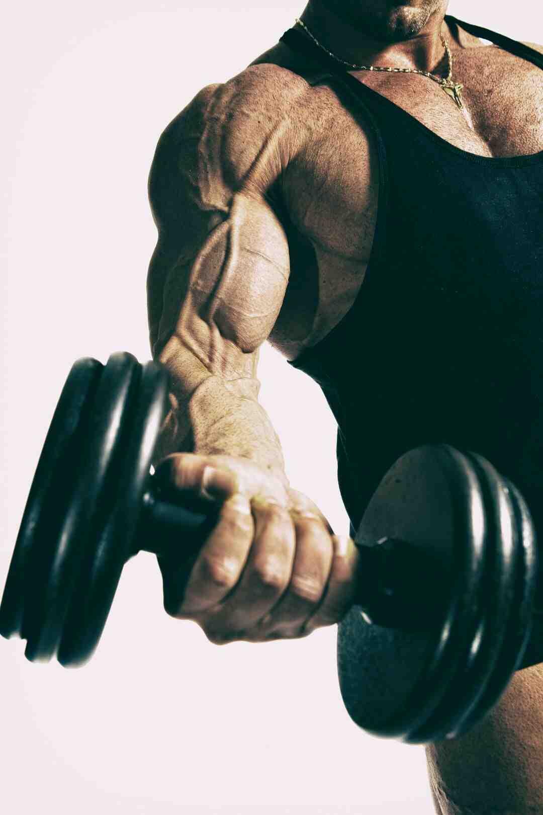 Programme musculation homme prise de masse